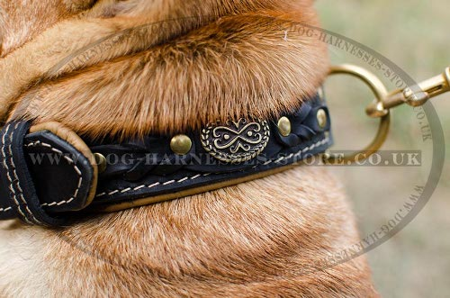 Shar-Pei Collar of Two-Ply Leather Nappa Padded, Royal Design