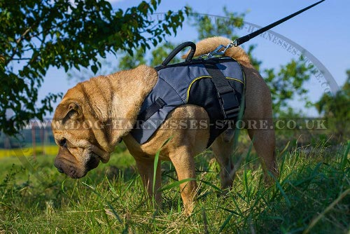 Shar-Pei Dog Harness Vest for Warming, Support and Rehab