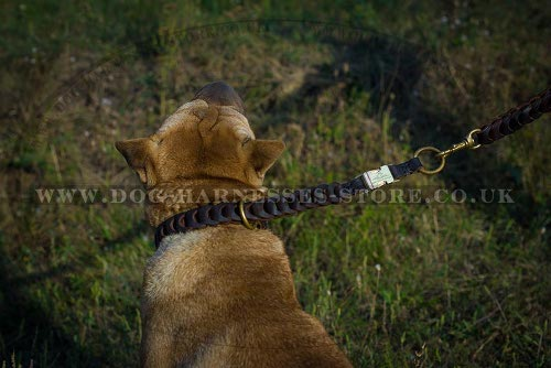 Shar-Pei Lead of Braided Leather with Nappa Padded Soft Handle