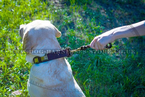 Short Leash for Dogs of Thick Braided Leather, Floating O-Ring