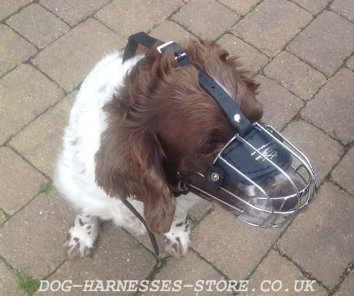 Lightweight Wire Basket Dog Muzzle for Springer Spaniel