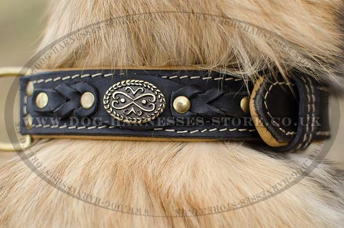 Tervuren Collar of Royal Design, Leather with Nappa Padding