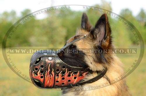 Tervuren Muzzle with Exclusive Flame Hand Painting on Leather