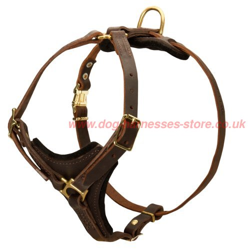 Bestseller! Dog Harness Tracking UK, Leather Outfit for Walks