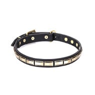 "Leather Dog Collar Brass Fittings ""Wealth Effulgence"" by Artisan"