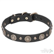 Leather Dog Collar with Brass Flowers and Small Studs