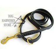 Leather Dog Leash with Solid Brass Snap Hook, Leather Lead