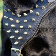 Leather Spiked Dog Harness with Padded Chest Plate