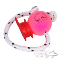 Magnet Ball for Dog Training with MAXI Power-Clip by Top-Matic