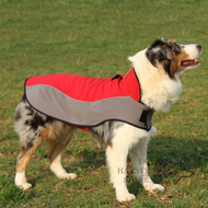 Nylon Dog Coat for Australian Shepherd, Waterproof and Warm