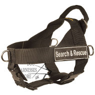 Dog Harness Moisture-Resistant, Lightweight K9 of Strong Nylon