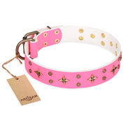 "Female Dog Collar ""Chi-Chi Pink Rose"" FDT Artisan with Stars"
