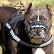 Nylon Dog Harness for Pitbull Training with Reflective Strap