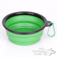 Portable Dog Food and Water Bowl of Small Size