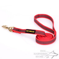 Quality Nylon Dog Leash with Nonslip Rubber Lines, Red Color