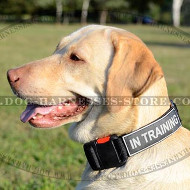 Quick Release Collar for Dogs with ID Patches on Velcro