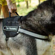 Reflective Dog Harness for Alaskan Malamute, Nylon with Patches
