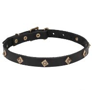 """Rhombuses"" Thin Leather Dog Collar with Brass Decor for Walks"
