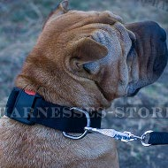 Shar-Pei Collar Nylon with Quick-Release Buckle, Adjustable Size
