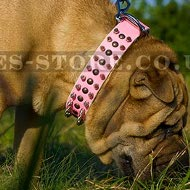 Shar-Pei Collar Female of Pink Leather with Spikes and Studs
