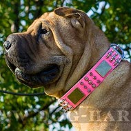Shar-Pei Dog Collar Pink Leather with Spikes, Cones and Plates