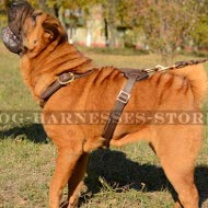 Shar-Pei Dog Harness Light-Weight for Long Walking and Tracking