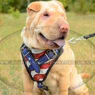 Shar-Pei Harness Leather with American Pride Hand Painting
