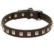 Small Leather Dog Collar with Square Studs of Caterpillar Design