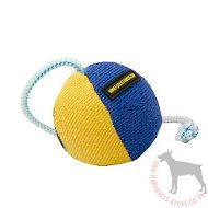 Dog Ball on String for Dog Training and Games | Soft Dog Toy