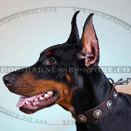 Soft Leather Dog Collar with Nickel Plated Circles Decor