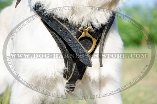 Leather Dog Harness for Golden Retriever UK