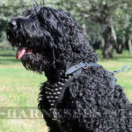 Black Russian Terrier Felt Padded and Spiked Leather Dog Harness