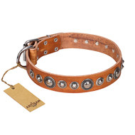 "Tan Leather Dog Collar FDT Artisan ""Daily Chic"" with Decorations"