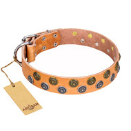 "Tan Leather Dog Collar FDT Artisan with Studs ""Precious Sparkle"""