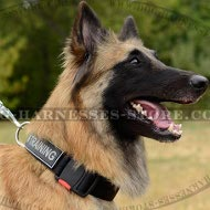 Tervuren Collar, ID Patches and Easy to Release Buckle, Nylon