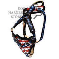 "Hand Painted Leather Dog Harness ""American Pride"""