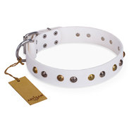 "White Leather Dog Collar with Studs ""Snowflake"" FDT Artisan"