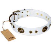 "White Leather Dog Collar FDT Artisan ""Magnetic Appeal"""