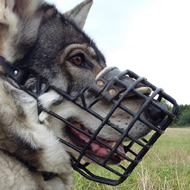 Wire Basket Cage Dog Muzzles
